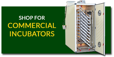 Commercial Incubator / egg-incubators
